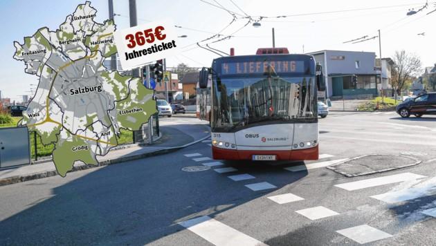 Salzburger Obus (Bild: Markus Tschepp)