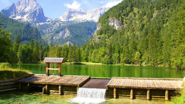 Zur Lieblingswanderung, etwa zum Schiederweiher, mit dem Bus (Bild: stock.adobe.com, krone.at-Grafik)