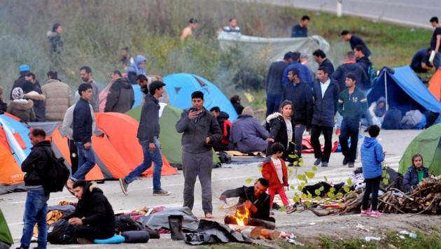 Migranten campieren nahe Velika Kladusa in Bosnien. (Bild: AFP)