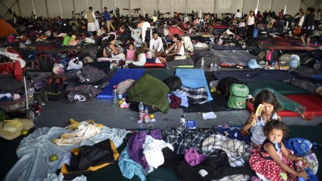 Die Flüchtlinge sind in einem Sportzentrum untergebracht. (Bild: APA/AFP/Alfredo ESTRELLA)