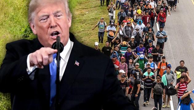 Die US-Regierung wollte Migranten gezielt in Demokraten-Städten unterbringen. (Bild: AP, APA/AFP/Johan ORDONEZ, krone.at-Grafik)