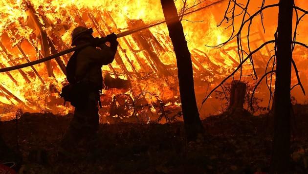 (Bild: AFP/Getty Images/Justin Sullivan)