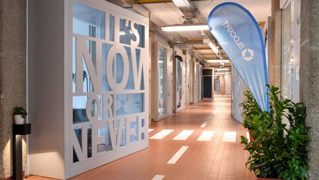 Für g'standene Unternehmen und Gründer wurde Platz geschaffen - insgesamt entstanden 56 Büros. (Bild: Harald Dostal)