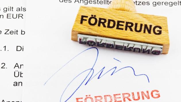 Rund 74.000 Euro an Förderung musste eine Leserin zurückzahlen (Symbolbild). (Bild: ©Gina Sanders - stock.adobe.com)