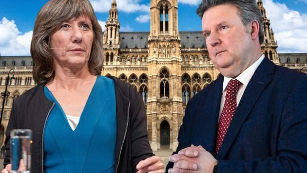 Birgit Hebein und Michael Ludwig (Bild: APA/GEORG HOCHMUTH, APA/HANS KLAUS TECHT, stock.adobe.com, krone.at-Grafik)