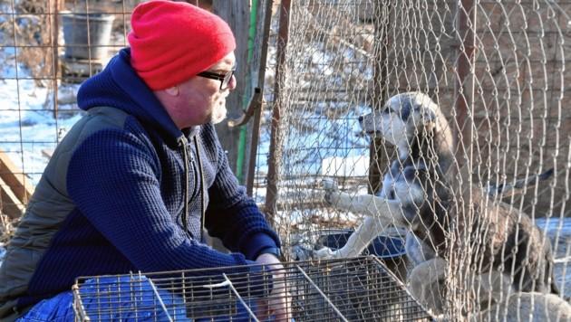 DJ Ötzi überwand seine Angst und half heimat- und herrenlosen Hunden in Bukarest. (Bild: Kerstin Joensson)