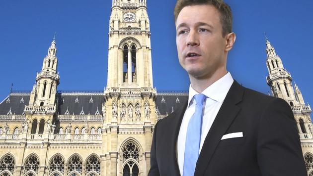 Gernot Blümel, ÖVP (Bild: APA/ROBERT JAEGER, stock.adobe.com, krone.at-Grafik)