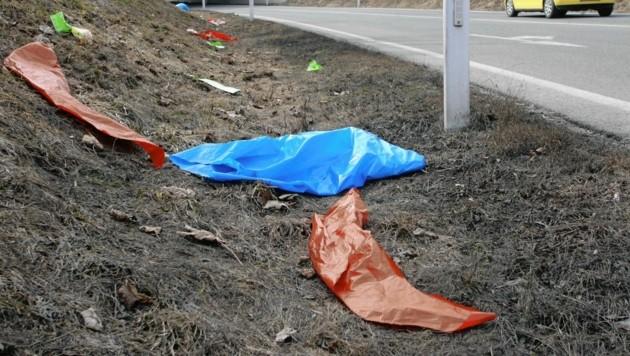 Müll am Straßenrand regt viele auf. In Grafenstein können sich jetzt Bewohner direkt an die Gemeinde wenden. (Bild: Kronen Zeitung)