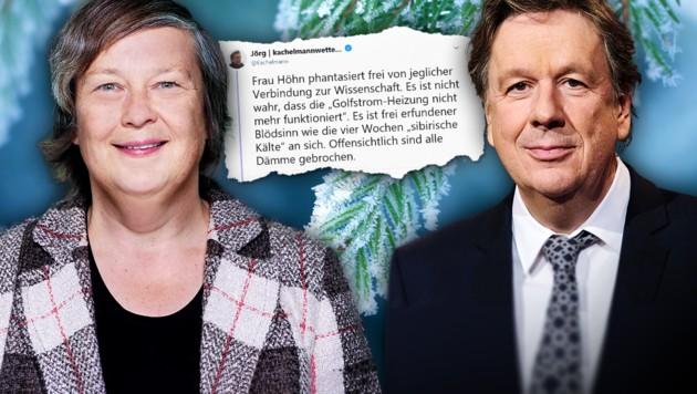(Bild: B90/Die Grünen, APA/dpa-Zentralbild/Sebastian Willnow, twitter.com, stock.adobe.com, krone.at-Grafik)