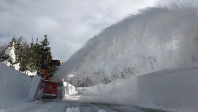 Schneeräumung, Winter, Straße, Verkehr, Winterdienst (Bild: Land Salzburg/Melanie Hutter)