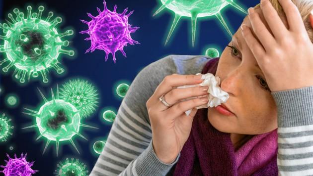 Ein lokaler Influenza-Ausbruch wurde bereits in Kroatien festgestellt. Das Virus trifft Corona-Risikogruppen besonders. (Bild: stock.adobe.com, krone.at-Grafik)
