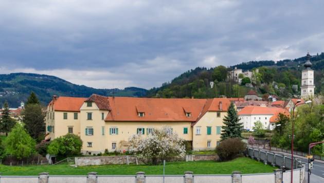 Im Süden und Westen von Schloss Bayerhofen in Wolfsberg befindet sich ein privater, rund ein Hektar großer Park, der von einer Mauer umringt ist. (Bild: Bolesch Immobilien)