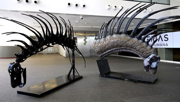 Dinosaurier mit riesigen Stacheln entdeckt