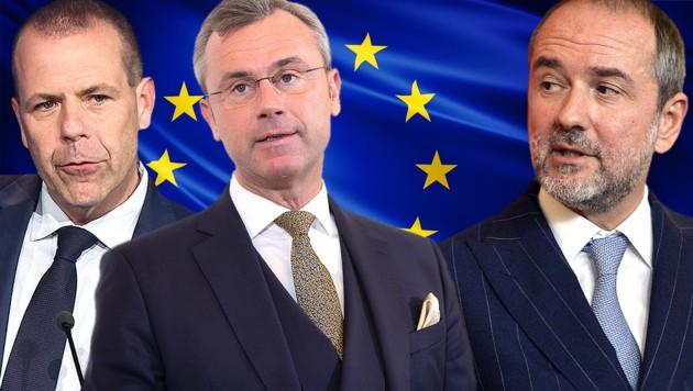 """SPÖ schießt sich auf """"EU-feindliche"""" FPÖ ein"""