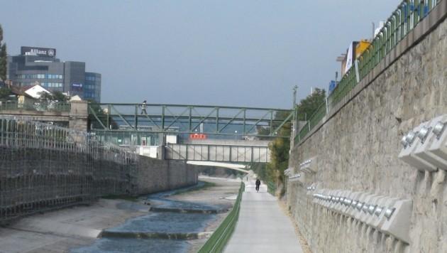 Der Wienfluss auf Höhe Kennedybrücke (Bild: APA/THOMAS RIEDER)