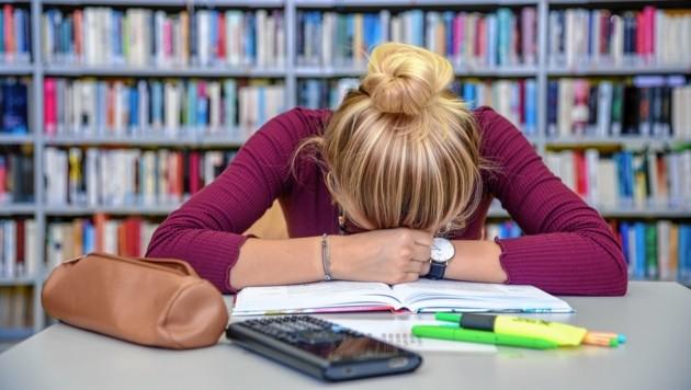Lernstress kann für viele zu einer ernsten psychischen Belastung werden - deswegen: Überblick bewahren! (Bild: Brenek Malena)