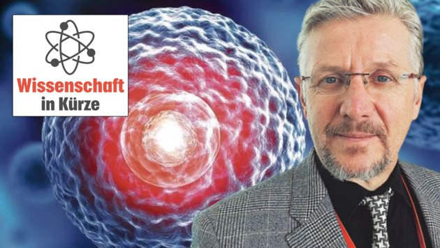 Salzburger Zelltherapeut Prof. Dr. Dirk Strunk (Bild: peterschreiber.media / stock.adobe.com)