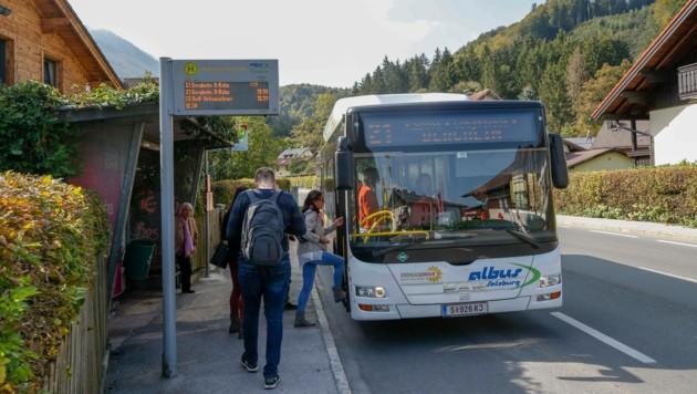 Geht es nach der Stadt-SPÖ sollen Albus-Linien künftig eine wichtigere Rolle spielen (Bild: Markus Tschepp)