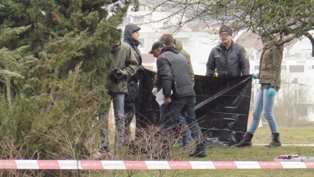 Krimininalisten untersuchten die Leiche im Linzer Donaupark (Bild: Markus Schuetz)