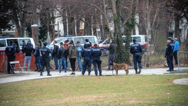 Polizeieinsatz in der Schutzzone Volksgarten. (Bild: Elmar Gubisch)