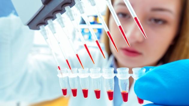 Molekularbiologie: zielgenaue Tumorabklärung im Labor. (Bild: science photo/stock.adobe.com)