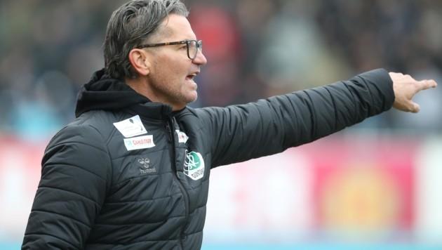 Ried-Coach Gerald Baumgartner (Bild: Scharinger Daniel)