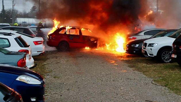 Fünf Autos sind Samstagfrüh auf einem Parkplatz in Schwechat ausgebrannt. (Bild: FF Schwechat)