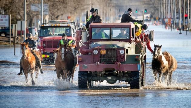Tausende Menschen und Tiere mussten in Nebraska (hier im Bild) und anderen US-Staaten im Mittleren Westen in Sicherheit gebracht werden. (Bild: AP)