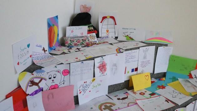 Liebevolle Zeichnungen für die verstorbene Sophie (Bild: Daniel Scharinger)