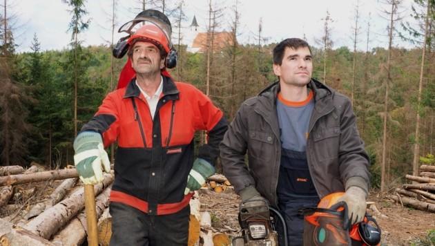 August und Sohn Stefan Altrichter blicken sorgenvoll in die Wipfel. (Bild: Gabriele Moser)