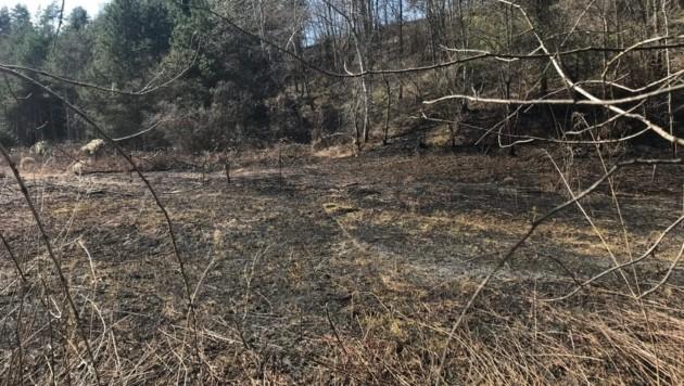 Bei den gelegten Feuern gerieten jeweils mehrere Tausend Quadratmeter Grünflächen in Brand. Auch die HFW Villach musste mehrmals unterstützend ausrücken. (Bild: HFW Villach)