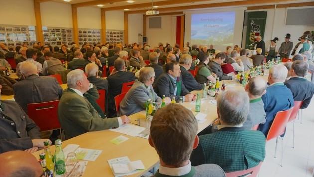 (Bild: Wallner Hannes/Kronenzeitung)
