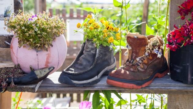 (Bild: ©lavizzara - stock.adobe.com)