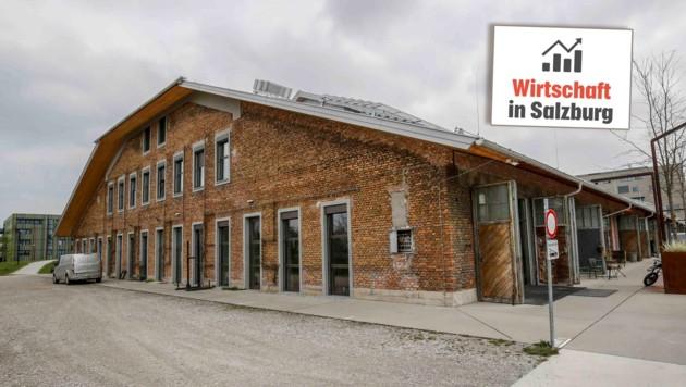Die Panzerhalle in Maxglan beherbergt 70 Unternehmen (Bild: Markus Tschepp)