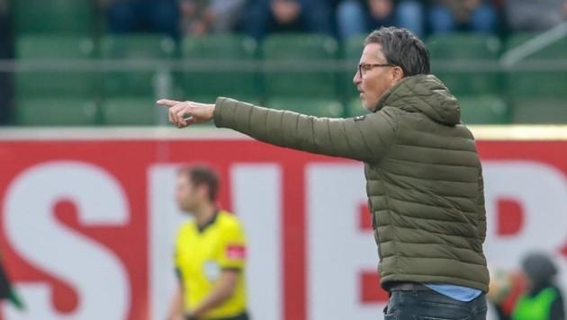 Noch keine Niederlage mit Ried: Coach Baumgartner. (Bild: Scharinger Daniel)