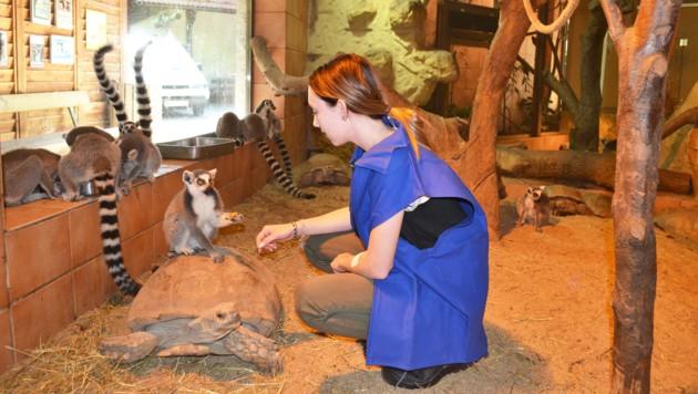 Auch den Beruf der Tierpflegerin kann man bei der Stadt Wels erlernen. (Bild: Stadt Wels)
