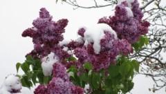 """Sechs Zentimeter Neuschnee wurden am Sonntag in St. Johann im Pongau gemessen (Symbolbild). (Bild: """"Krone""""-Leserreporter)"""