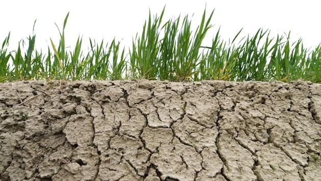 Bundesrat beschloss Ausrufung des Klimanotstandes