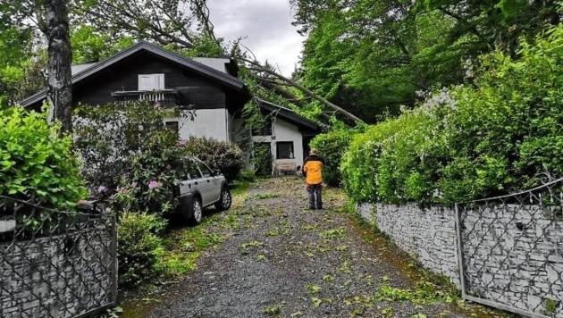 In Gratkorn stürzte ein Baum auf ein Wohnhaus (Bild: FF Gratkorn)