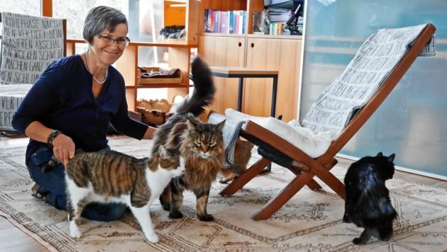 Die Katzen scharren sich um ihre Pflegemami und schnurren. (Bild: Christof Birbaumer)