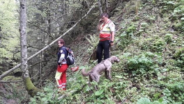 Die schwierige Suche im bewaldeten Gebiet (Symbolbild) (Bild: Suchhundestaffel Samariterbund)