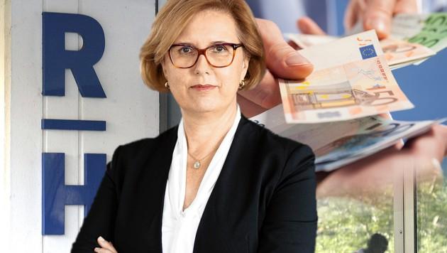(Bild: HARALD SCHNEIDER, Rechnungshof/Vyhlanek, stock.adobe.com, krone.at-Grafik)