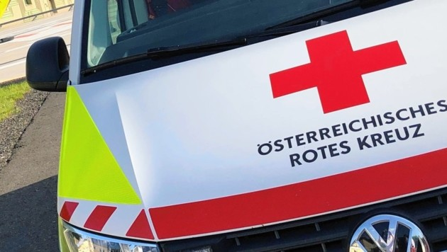 (Bild: Rotes Kreuz Bruck-Mürzzuschlag/S)
