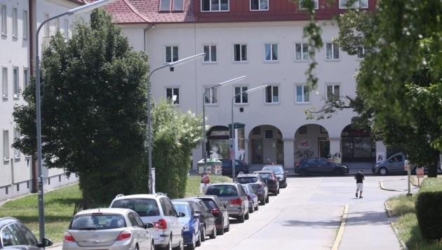 Ein Gemeindebau in Wien (Bild: Tomschi Peter)