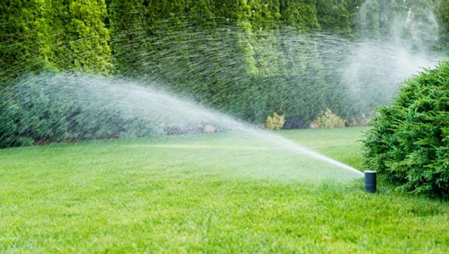 Ein Rasensprenkler eignet sich besonders für die Bewässerung großer Grünflächen. (Bild: ©catto32 - stock.adobe.com)