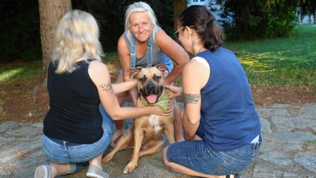 """""""Mucki"""" mit Tiertrainerin Andrea März (Mitte) und den Frauerln Timea und Julia (Bild: Peter Tomschi)"""