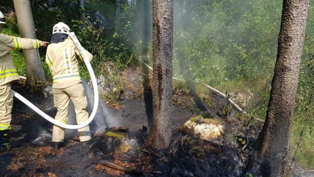 """In Kramsach führte eine """"entsorgte"""" Bierflasche in einem Wald zu einem Brand. Das Glas wurde durch die Sonneneinstrahlung zur Zündquelle. Rund 50 Quadratmeter Wald standen in Flammen, die Feuerwehr konnte zum Glück rasch löschen. (Bild: ZOOM.TIROL)"""