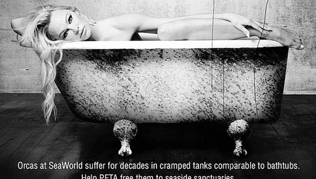 """Pamela Anderson protestiert nackt gegen die Gegfangenschaft von Orca """"Corky"""". (Bild: instagram.com/pamelaanderson)"""