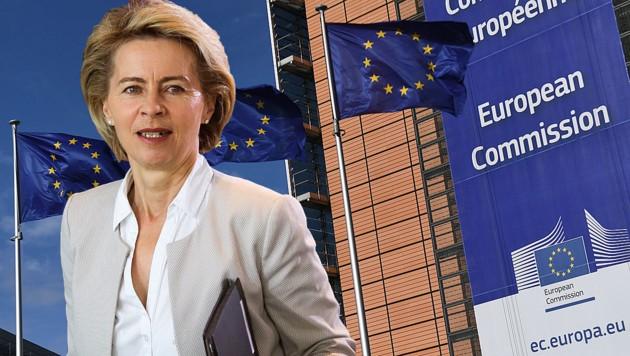 Ursula von der Leyen (Bild: AFP, krone.at-Grafik)