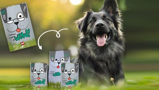 (Bild: Dogs Love, krone.at-Grafik)